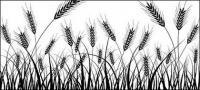 素材の小麦のシルエットをベクターします。