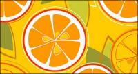 Combinación de naranjas del vector
