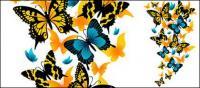 Matériau papillon exquis de vecteur