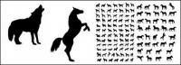 Ma y el perro de una variedad de movimientos en imágenes