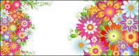 Die bunten Blumenmuster