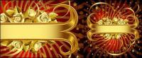 Rosa Blanca y banner oro material de vectores