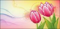 Mimpi tulip