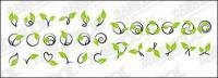 Vektor-Rattan-Pflanze-material