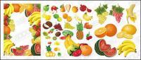 Material de vetor de frutas do evento