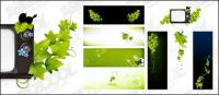Papillon vert matériel de vecteur de TV