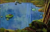 池、ハスの葉、カエル