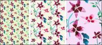 Moda coreana patrones magnífica serie psd capas de material-10