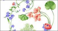 Psd แฟชั่นทาสีมือลายดอกไม้รูปชั้นวัสดุ-2