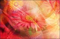 Супер ультрачистый тема цветок-4