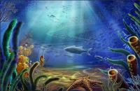 Mundo submarino - estrella de mar, hippocampus, peces, algas psd capas de material