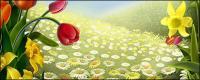 Fleurs et Pâques