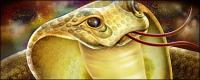 งูเห่าน่าสนใจ psd ชั้นวัสดุ