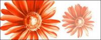 ทาสีมือดอกไม้ชั้นวัสดุ psd-12