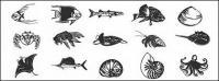 Vida de peces y Marina