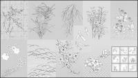 Dibujo de líneas de vector de flores -50 (diente de León, lily)