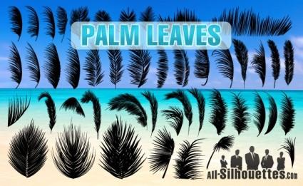 пальмовых листьев