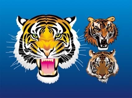 3 harimau kepala vektor