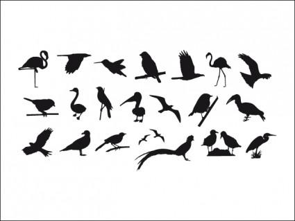 鳥のシルエットのコレクション