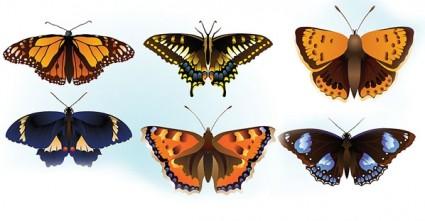 vector livre borboleta