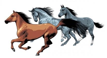 vetor de cavalo