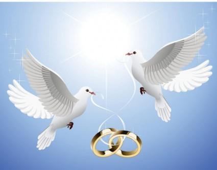 las palomas en el anillo colgando del vector