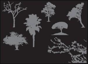 7 silhouettes d'arbre