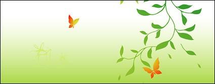 фотографии Зеленые ветви и бабочка