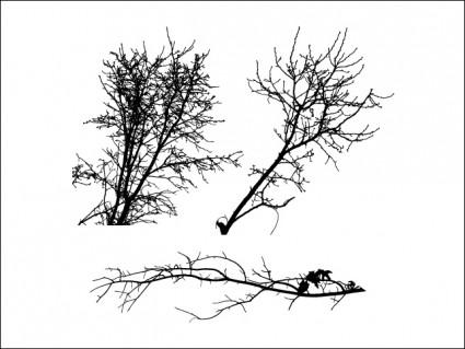 silhouettes d'arbre