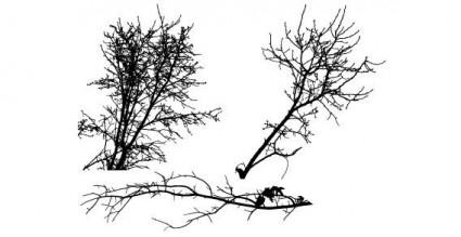 vector de árbol