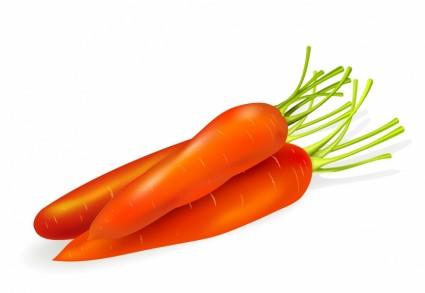 carottes isolés