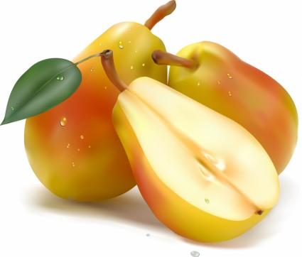 vetores de frutas realista