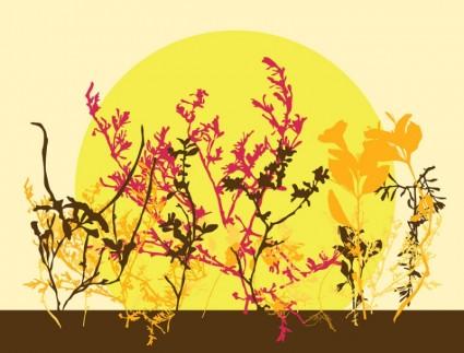 flores de outono