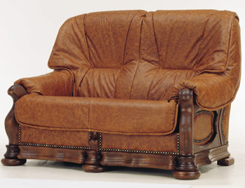 Modern brown double seats sofa