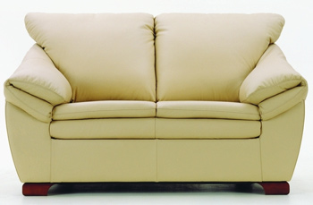 European modern simple double seats sofa