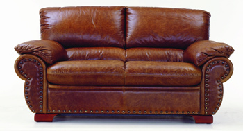 Modern brown double seats leather sofa
