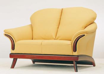 European-style cushion double seats sofa