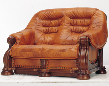 Modern double seats brown sofa