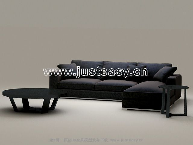 Classic combination of black sofa