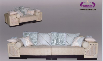 Beautiful home sofa