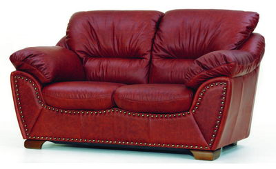 Typical leather love seat