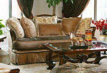 Sofa and coffee table combo