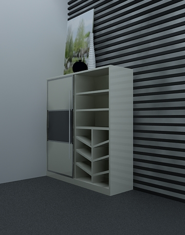 Cabinets for Shoes
