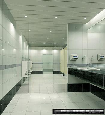 Model of public toilet