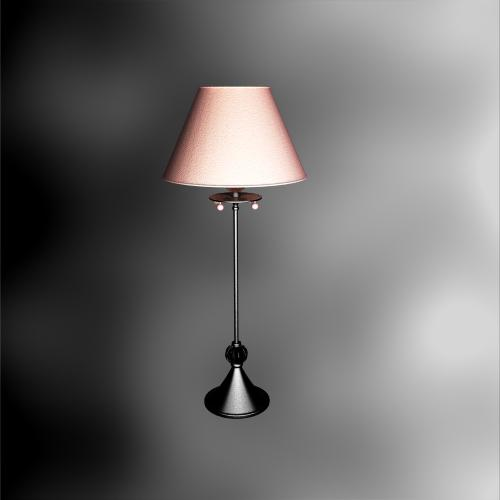 Continental Iron Table Lamp Home
