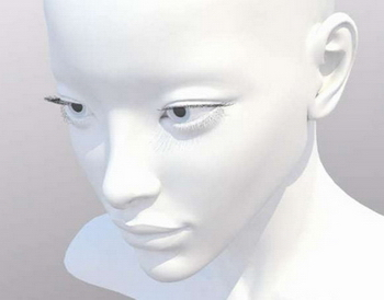 Refined model of the female head (mb, mtl format)