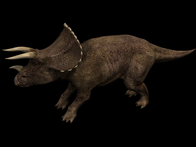 Animal Model: Triceratops Dinosaur 3dS Max Mod