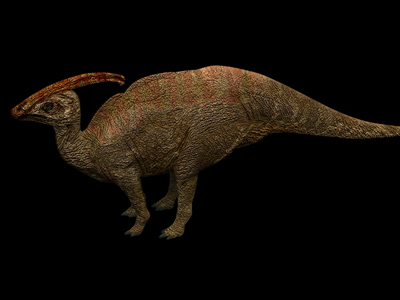 Animal Model: Parasaurolophus Dinosaur 3dS Max Model