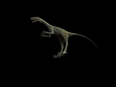 Animal Model: Small Size Carnivorous Dinosaur 3dS Max Model