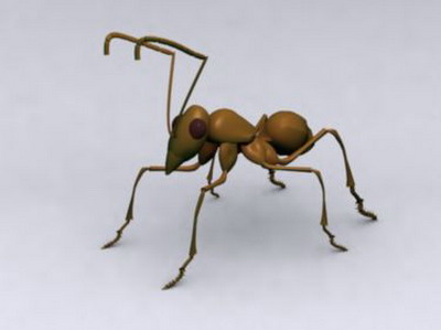 Animal Model: Ant 3DsMax Model
